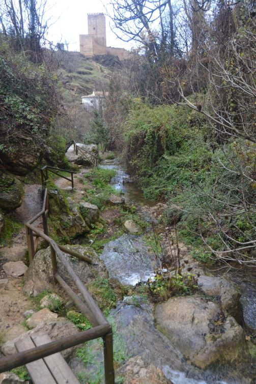 Senda río Cerezuelo en Cazorla