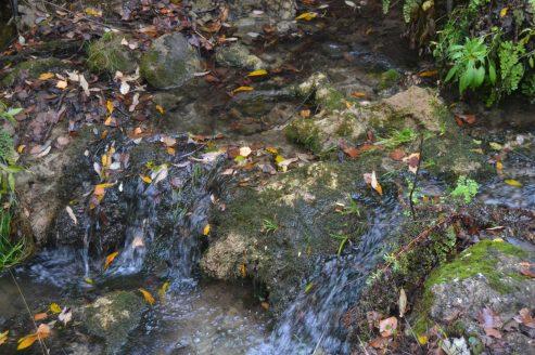 Río Cerezuelo de Cazorla