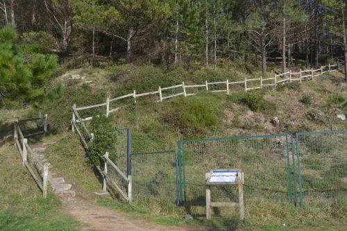 Escaleras de Astondo