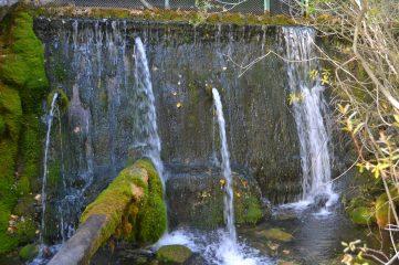 Fuente del Marfil