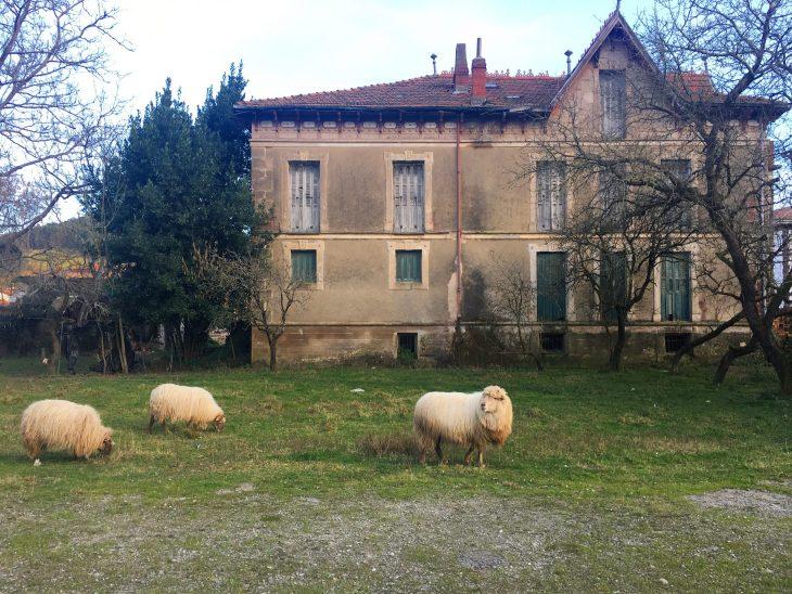Casa de la familia López de Larrucea
