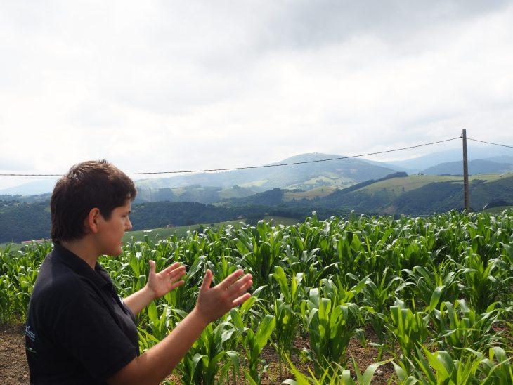 Maite en un campo de maíz