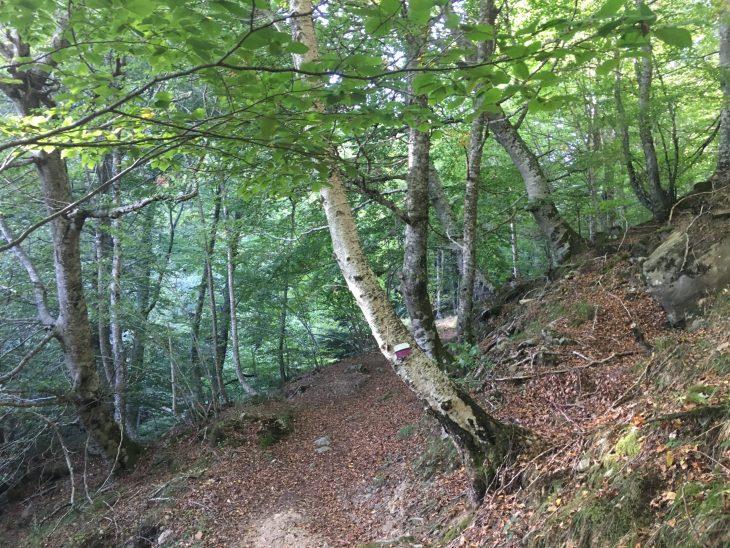 Ruta de la Cascada de la Salceda en Las Merindades