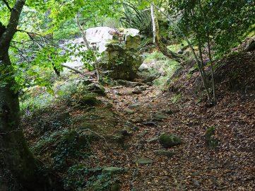 Camino de la cascada