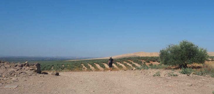 Qué ver en Linares de Jaén