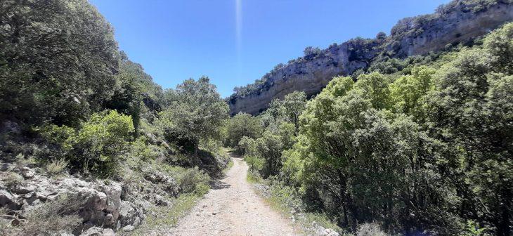 Ruta del Desfiladero del río Purón en Valderejo