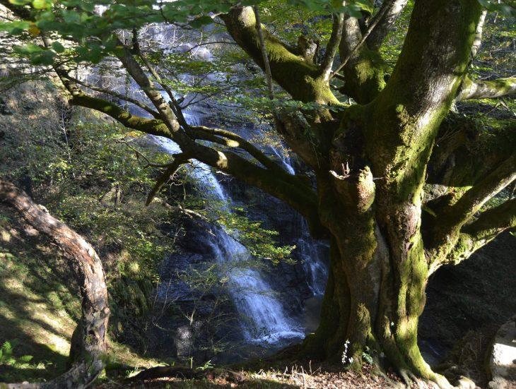 Mirador de la Cascada de Uguna