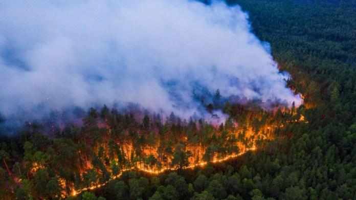 Sibirya'daki yangınlar rekor düzeyde CO2 açığa çıkardı