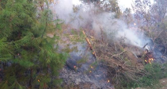 Kahramanmaraş'taki orman yangını kontrol altına alındı