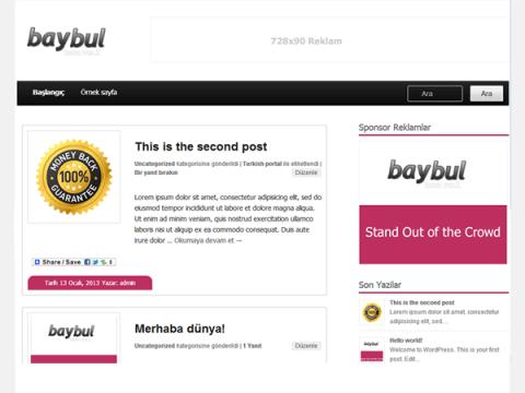 baybu_turkce_tema