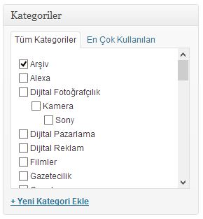 kategori seçme