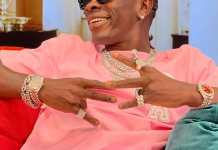 Shatta wale - pieces of cake