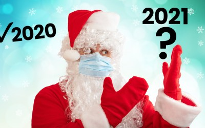 New Webinar: Deja Flu: 2021 Holiday Ecommerce Challenges – 5 Key Action Items for D2C and Amazon