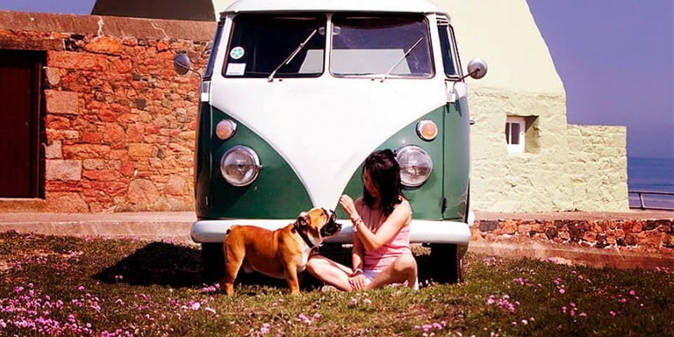 camper with pets