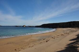 North Head Beach