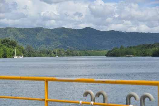 Looking back across the Daintree River towards Cape Tribulation.