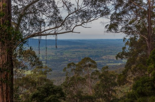 Pipers Lookout.