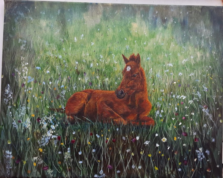 """Having a Good Rest"" painting of a colt in a field of wildflowers by Yeshuas Child Art"