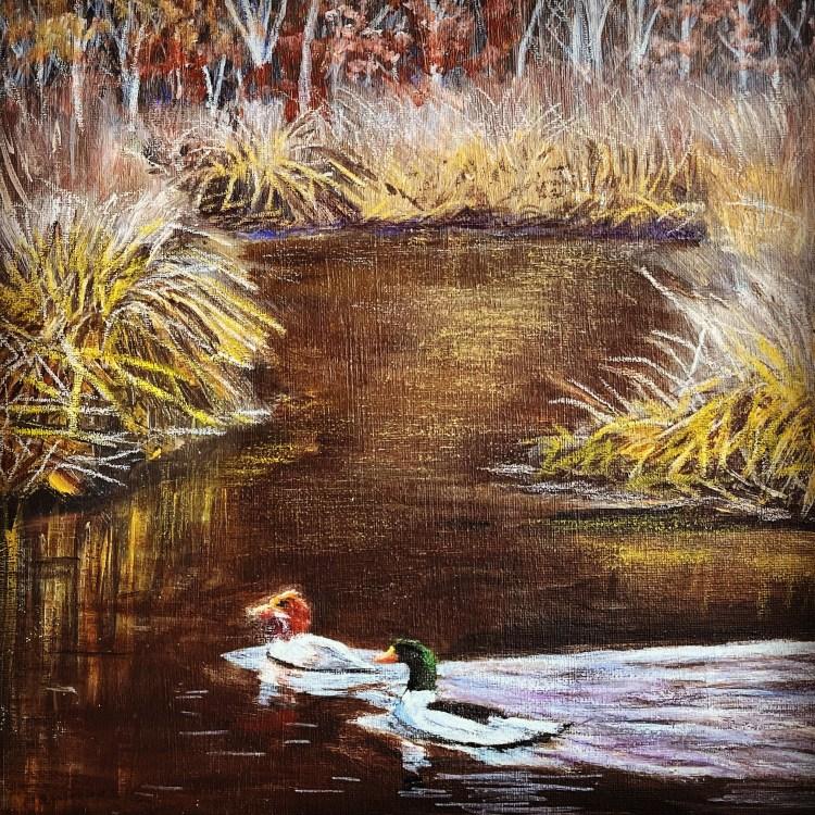 Mergansers ducks in a marsh acrylic painting