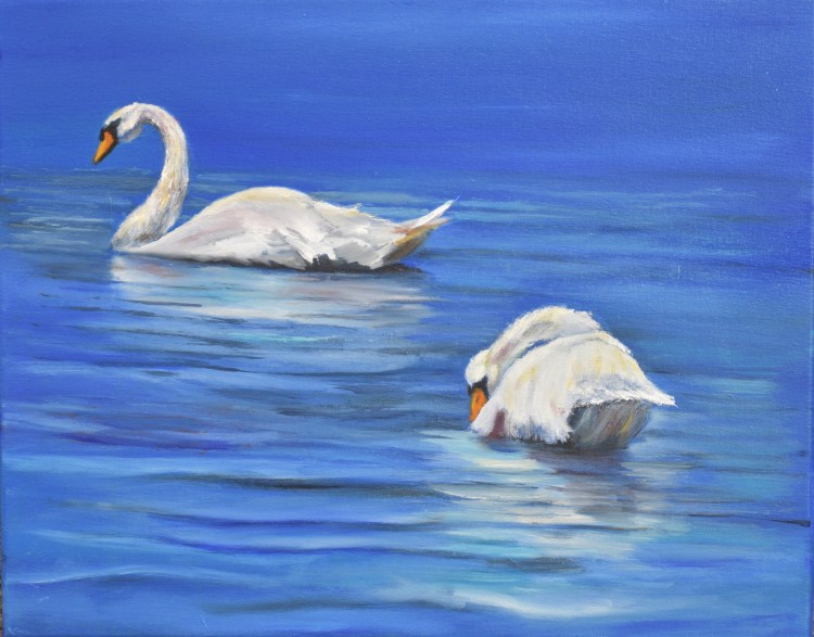Original oil painting of two mute swans on the Alpena river in Michigan
