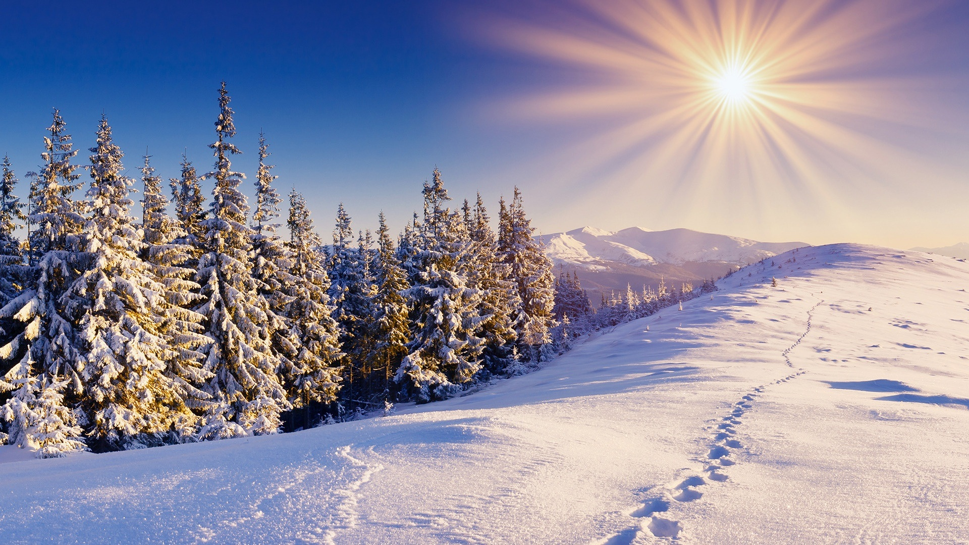 Winter Wallpapers High Quality  Download Free