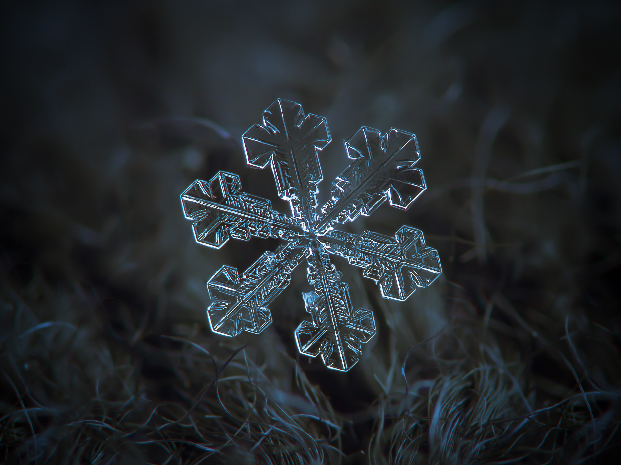 Falling Snow Wallpaper For Ipad Snowflake Macro Wallpapers High Quality Download Free