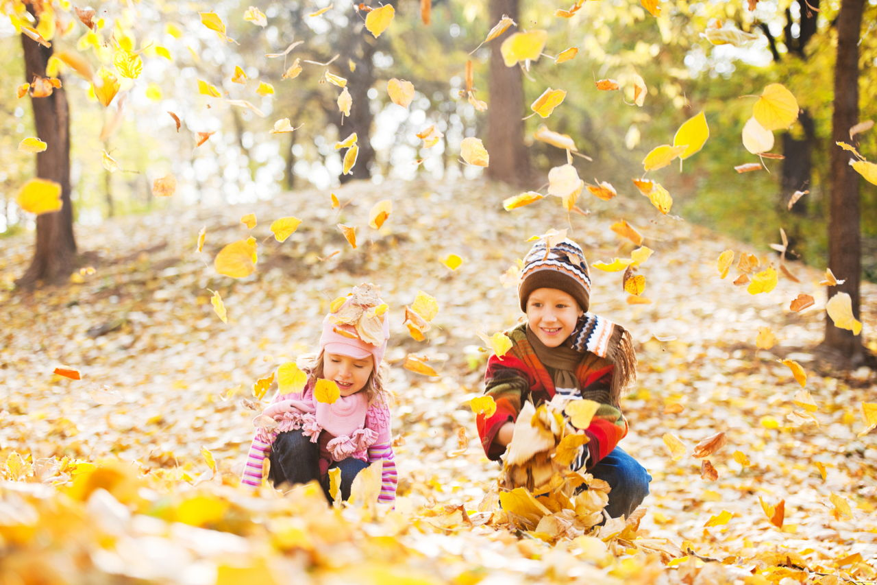 Fall Leaves Iphone Wallpaper Children Playing In Autumn Leaves Wallpapers High Quality