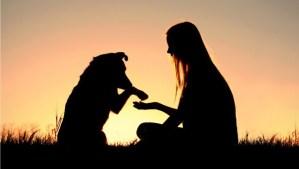 dog-human-bond1