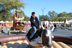Mechanical bull company picnic