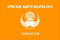 CPNS Kabupaten Barito Selatan 2018