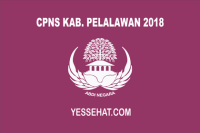CPNS Kabupaten Pelalawan 2018