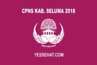 CPNS Kabupaten Seluma 2018