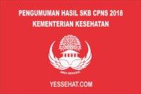 Link Pengumuman Hasil SKB CPNS Kementerian Kesehatan 2018
