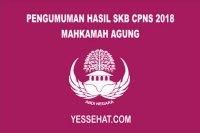 Link Pengumuman Hasil SKB CPNS Mahkamah Agung 2018