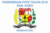 Rekrutmen PPPK / P3K Karo 2019: Persyaratan, Formasi dan Jadwal