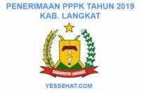Rekrutmen PPPK / P3K Langkat 2019: Persyaratan, Formasi dan Jadwal