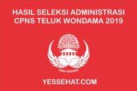 Pengumuman Hasil Seleksi Administrasi CPNS Teluk Wondama 2019