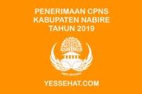 Pengumuman Hasil Seleksi Administrasi CPNS Nabire 2019