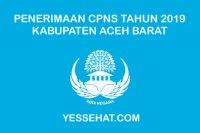 Penerimaan CPNS Kabupaten Aceh Barat Tahun 2019 (PPPK / P3K)
