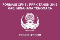 Formasi CPNS / PPPK / P3K Kabupaten Minahasa Tenggara 2019