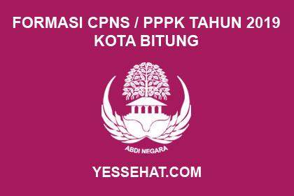 Formasi CPNS / PPPK / P3K Kota Bitung 2019