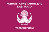 Formasi CPNS Kabupaten Wajo Tahun Anggaran 2019