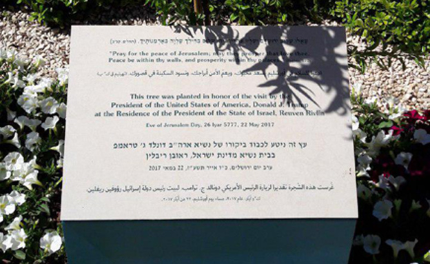 Tree planted at Israeli President's Residence in honor of Trump with verse from Psalms