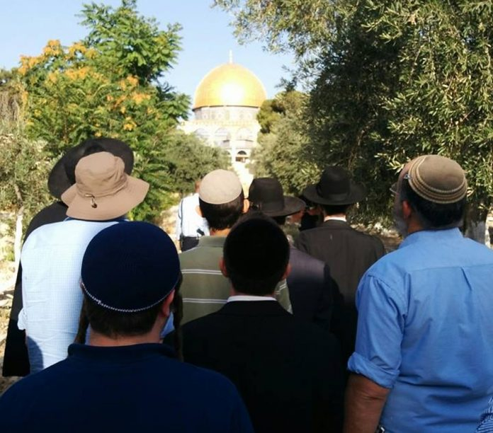 Jews Return to Temple Mount without Waqf Harassment