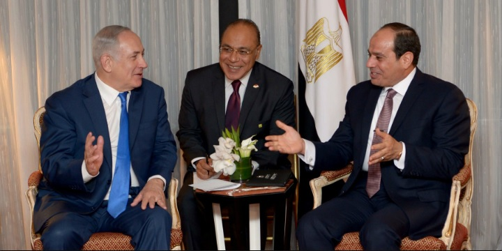 Egypt Expert: Public Netanyahu-Sisi Meeting Likely Meant to Signal a Further Warming of Jerusalem-Cairo Ties