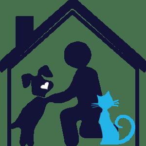 Cuidadores de gatos a domicilio en Madrid