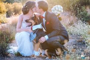Pajaritas para perros-boda-lorena