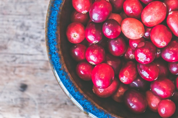 bowl of raw cranberries fro cranberry jam