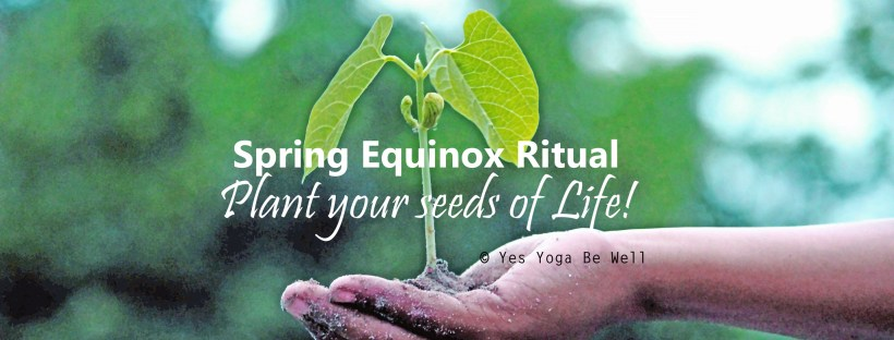 Seed planting ritual for Spring Equinox