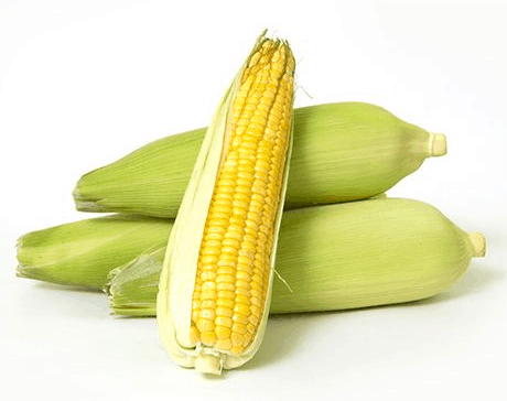 Corn on The Cob Calories